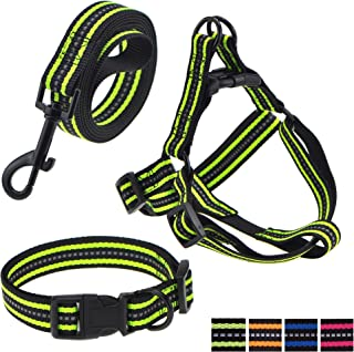 Mile High Life Night Reflective Double Adjustable Band Nylon Small Puppy Pet Dog Combo Collar Leash Harness or Leash Collar Set