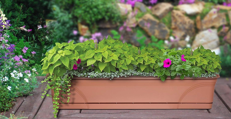 2er Set pflanzkasten Quad 36 x 36 x 36 cm pot de fleurs bacs à plantes Jardinière