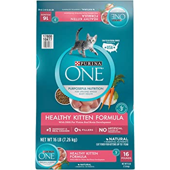 Purina ONE Healthy Kitten Formula Kitten Food