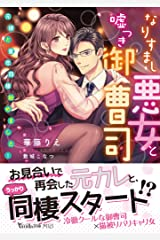 なりすまし悪女と嘘つき御曹司~元彼と蜜恋同棲始めました!~ (ヴァニラ文庫) Kindle版