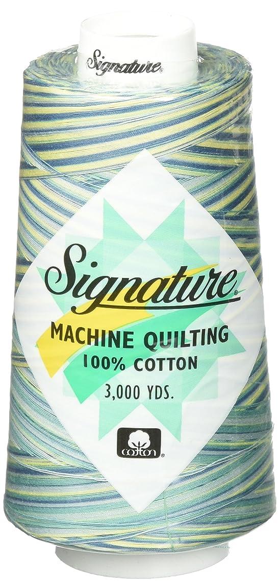 Signature St. Thomas Quilting Thread, 3000 yd, Variegated