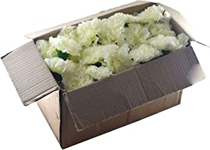 Fourwalls Artificial Decorations Loose Carnation Flower Heads (Pack of 144 Pcs, White)
