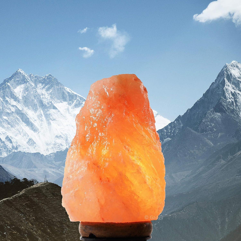 Gadgy Lampara de Sal del Himalaya