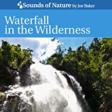 Waterfall In the Wilderness