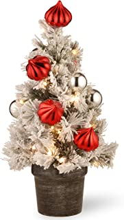 National Tree 2 Foot Snowy Bristle Pine Tabletop Tree with Red and Silver Ornaments and 35 Battery Operated Warm White LED Lights with Timer in Decorative Pot (SNP7-308-20-B)
