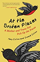 At the Broken Places: A Mother and Trans Son Pick Up the Pieces (Queer Action/Queer Ideas, a Unique Series Addressing Pivo...