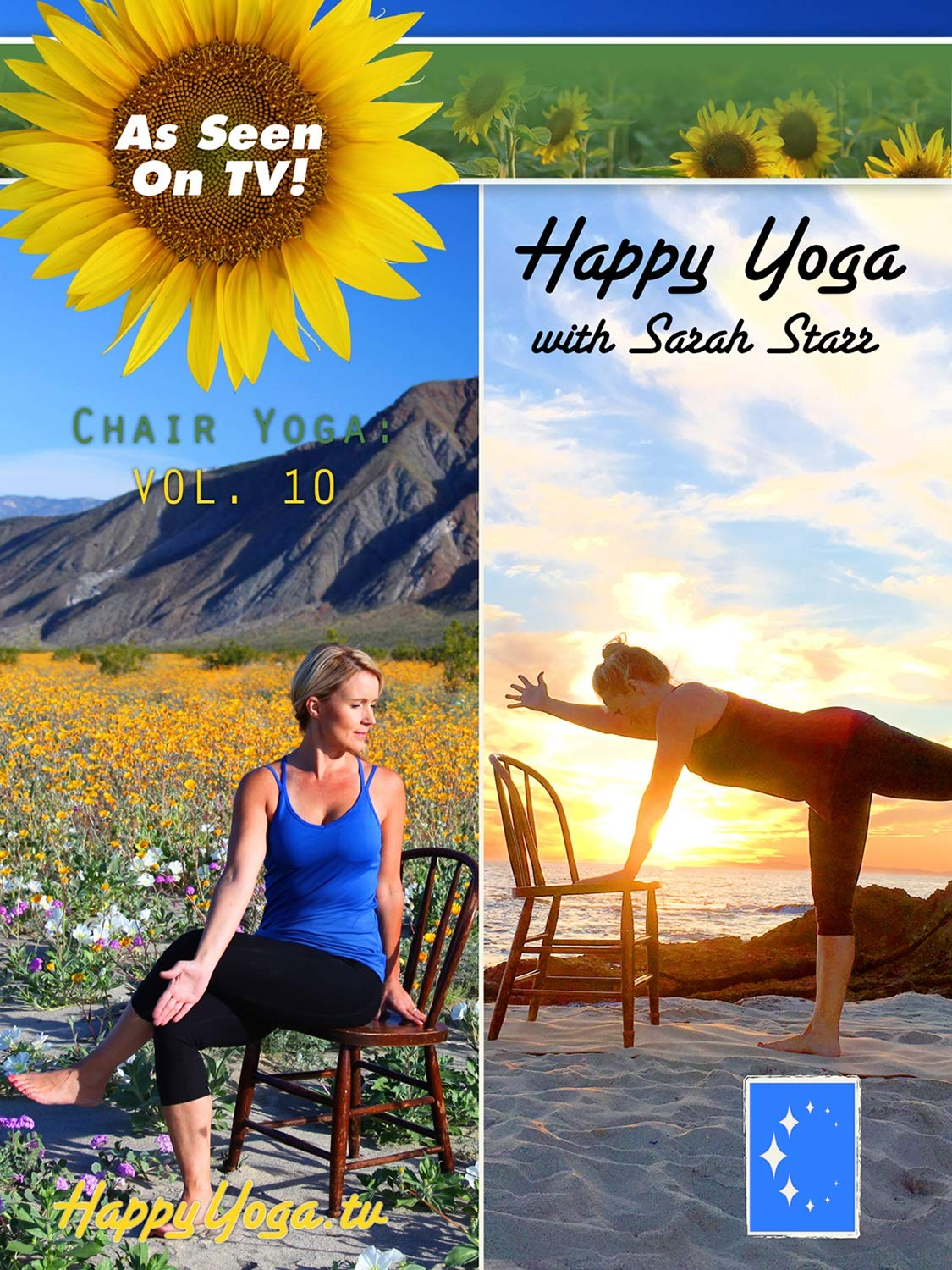 Happy Yoga with Sarah Raleigh Mall Chair Starr Industry No. 1 Volume 10