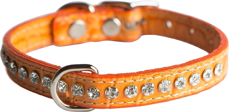 OmniPet Signature Leather Crystal and Dog Collar, Faux Crocodile Print, 10 , orange