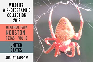 Wildlife: 19 Days in Memorial Park - 2019: A Photographic Collection, Vol. 13 (Wildlife: Memorial Park: Houston Texas)
