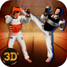 Taekwondo Fighting Tiger Tournament 3D