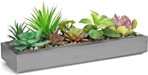Mixed Color Artificial Succulent Plant Arrangement in Modern 16-Inch Grey Clay Planter Tray