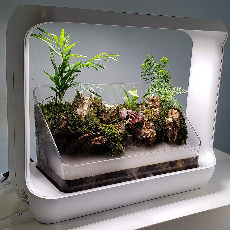 Lifegard R440871 驚きの価格が実現 LED Rock Garden with Waterfall 激安セール Terrarium Kit