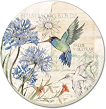CounterArt Green Violetear Hummingbird with Agapantha Bloom Absorbent Coasters, Set of 4