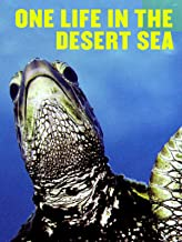 One Life in the Desert Sea