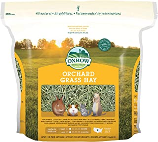 Oxbow Animal Health Orchard Grass Hay for Pets, 40-Ounce