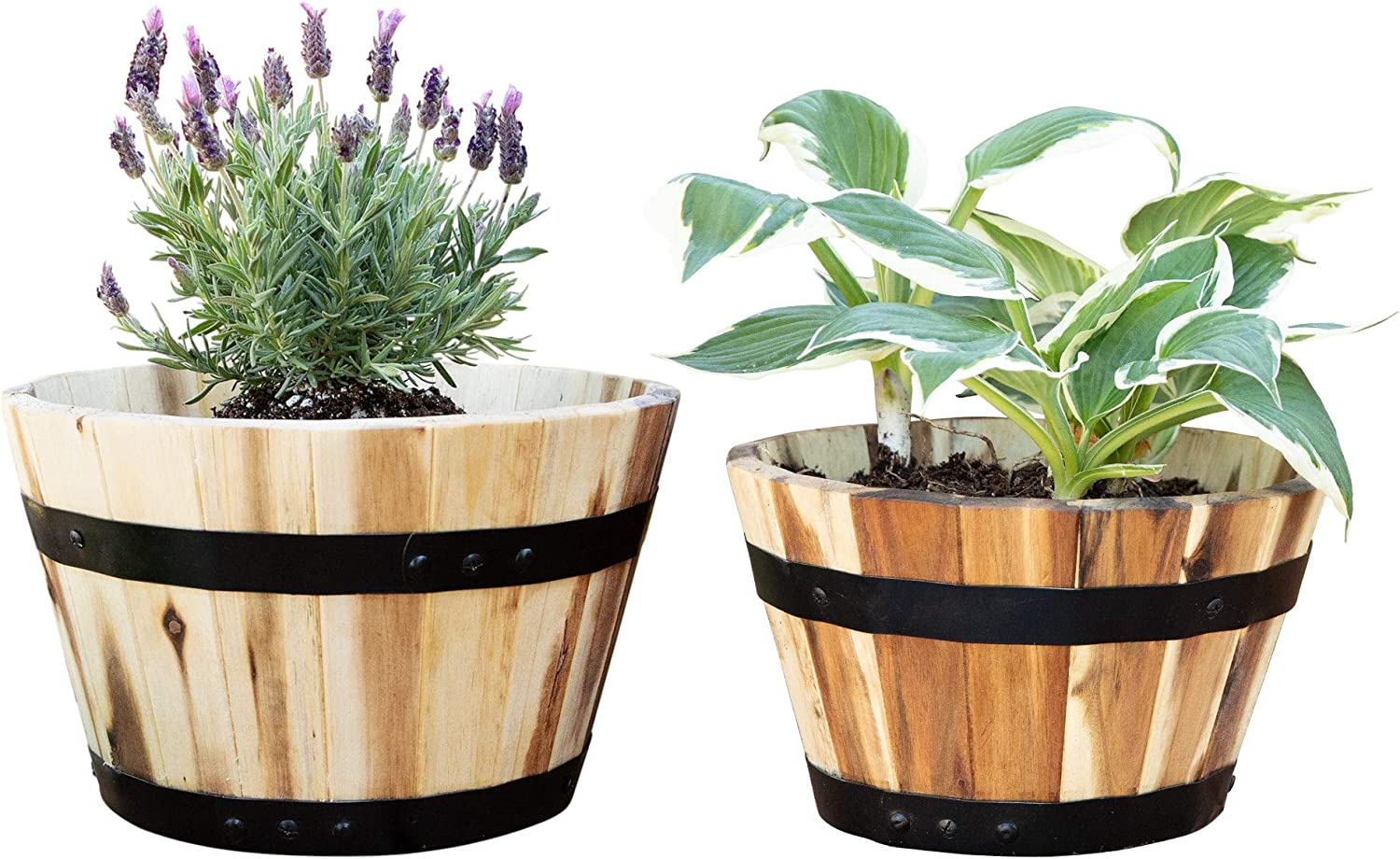 Villa Acacia Round Award Wood Pots Set of and for Two 10 Inches [Alternative dealer] F 11