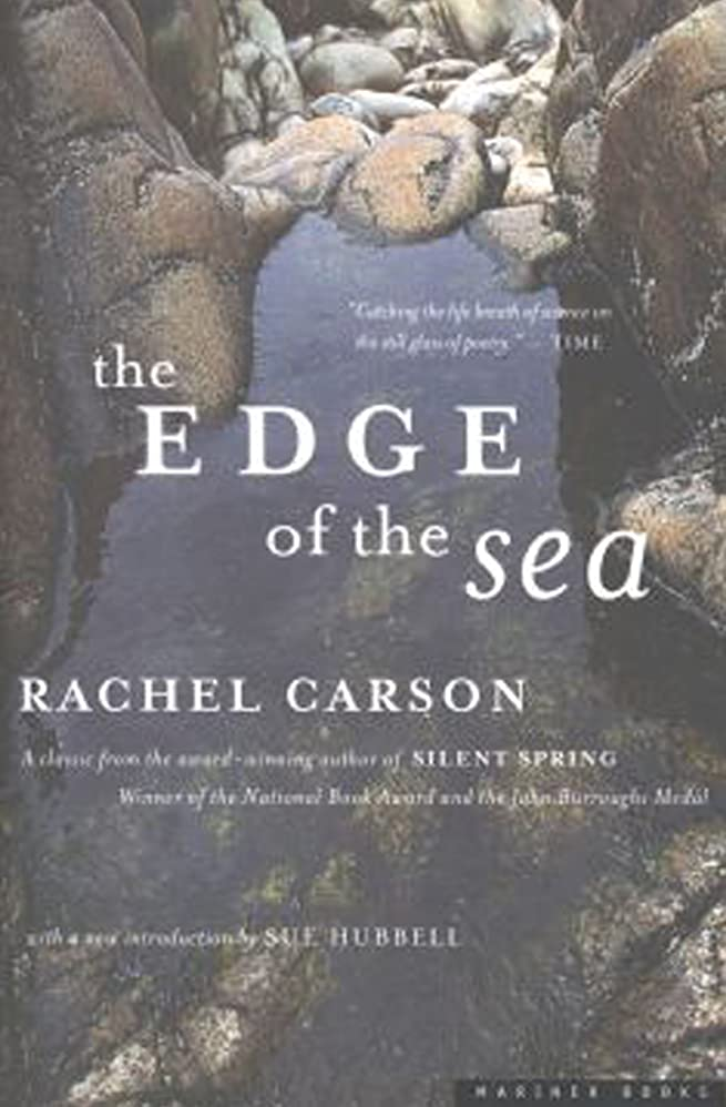 計り知れない誕生日払い戻しThe Edge of the Sea (English Edition)
