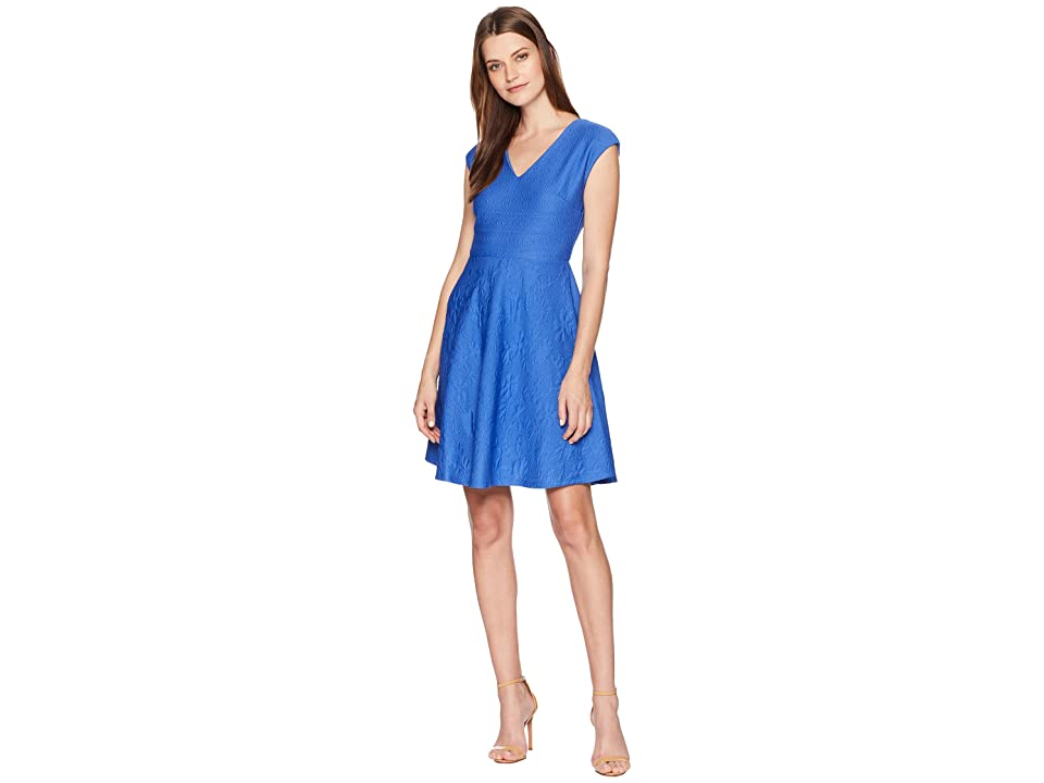 Taylor V-Neck Textured Fit-and-Flare Dress (Royal) Women
