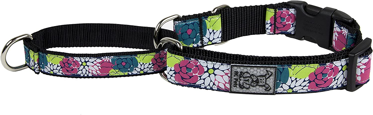 RC Pet Products 1  Easy Clip Martingale Training Dog Collar, Full Bloom, Medium