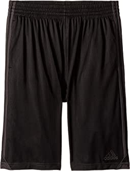 Foundation Mesh Shorts