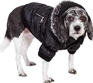 Best bond & co fashion for pets Reviews