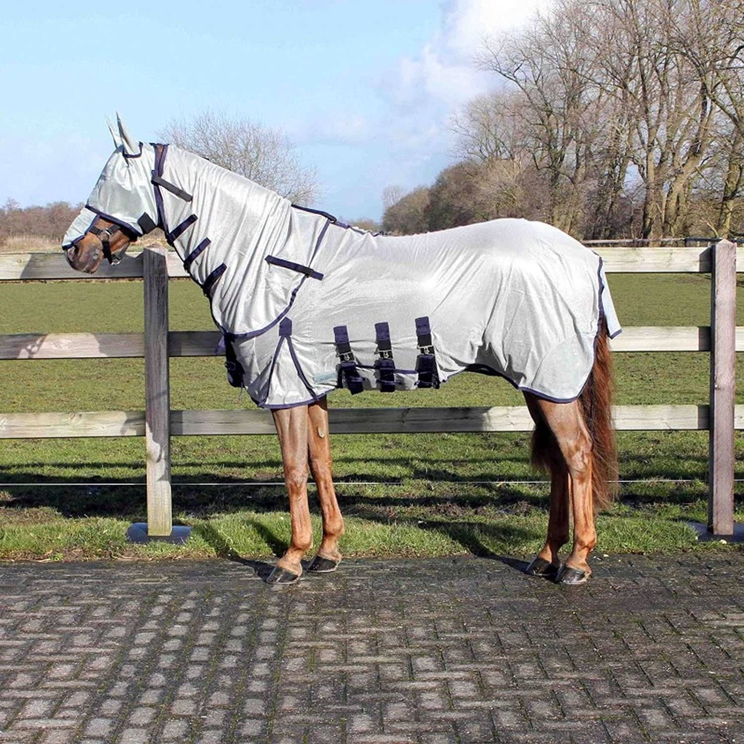 QHP AntiFly Rug with neck and Hood  Size 145