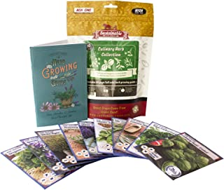 Culinary Herb Seeds Variety Pack - Outdoor & Indoor Herb Garden Kit - 10 Non-GMO Herb Garden Seeds for Planting - Basil Se...