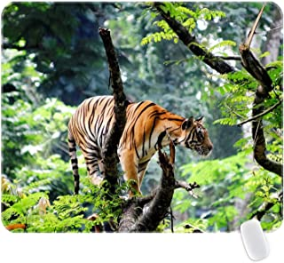 Bengal Tiger in Jungle Premium-Textured Mouse Pad Non-Slip Rubber Base Mousepad for Laptop Computer & PC Stitched Edges 10.3X8.3