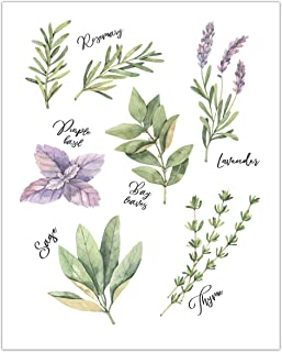 Watercolor Kitchen Herbs Art Print - Botanical Print - Kitchen Wall Decor - UNFRAMED - 8x10