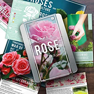 Gift Republic GR100002 Name a Rose Gift Box. Grow and Name Your Own Rose