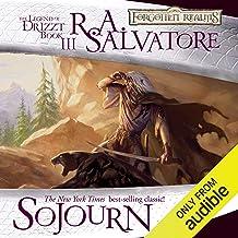 Sojourn: Legend of Drizzt: Dark Elf Trilogy, Book 3