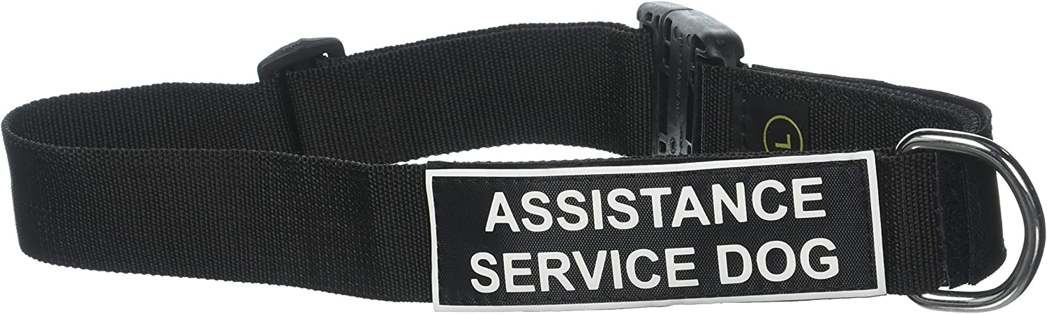 Dean and Tyler Patch Collar, Nylon Dog Collar with Assistance Service Dog Patches  Black  Size  Large  Fits Neck 26Inch to 37Inch