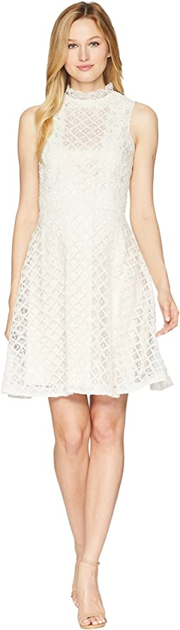 Tahari by ASL Lace Fit and Flare Dress