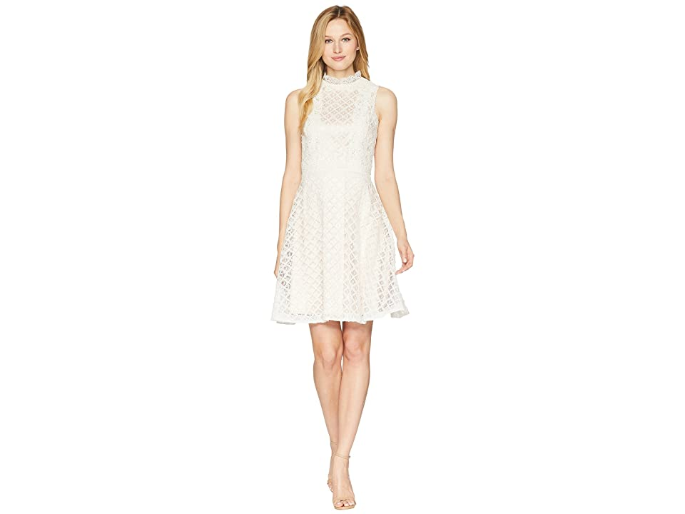 Tahari by ASL Lace Fit and Flare Dress (Ivory/Nude) Women