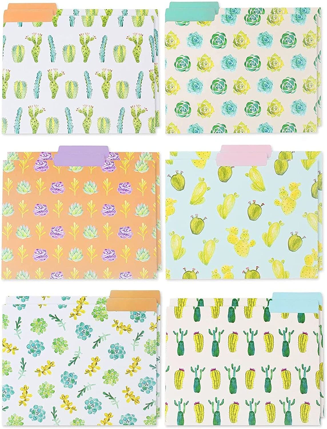 Our Quality inspection shop most popular File Folders - 12-Pack Succ Decorative Beautiful 6
