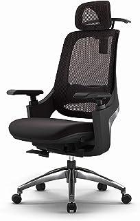 Keizer Executive Mesh Office Swivel Chair with Adjustable Headrest - Multifunctional Armrest - Lumbar Support - Tilt Funct...