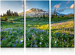 TUMOVO Native American Home Decor Mount Rainier Paintings Washington State,USA Landscape Pictures Reflection Lake Trail Sumeer Canvas for Living Room Framed Gallery-Wrapped Ready to Hang(28''x42'')