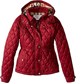 Burberry Kids - Mini Foxmoore Quilted Trench Parka (Little Kids/Big Kids)