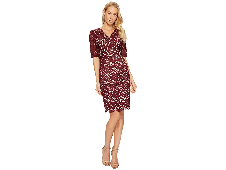 Ellen Tracy Elbow Sleeved Lace Dress with V-Neck and Nude Lining (Merlot) Women