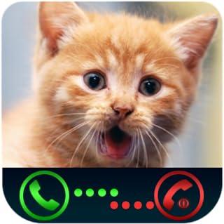 Prank Incoming Call