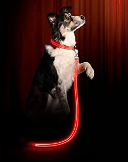 Illumiseen LED Dog Leash - USB Rechargeable - Available in 6 Colors & 2 Sizes - Makes Your Dog Visible, Safe & Seen