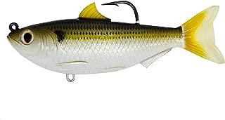 Best live target sardine Reviews