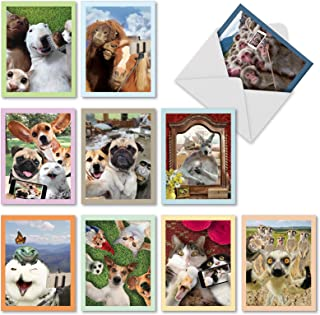 Animal Selfies - 10 Humorous Assorted Note Cards with Envelopes (4 x 5.12 Inch) - Blank All Occasion Pet Animal and Wildlife Greeting Card Set - Fun Photos of Cat, Dog, Monkey, Horse M2373OCBsl