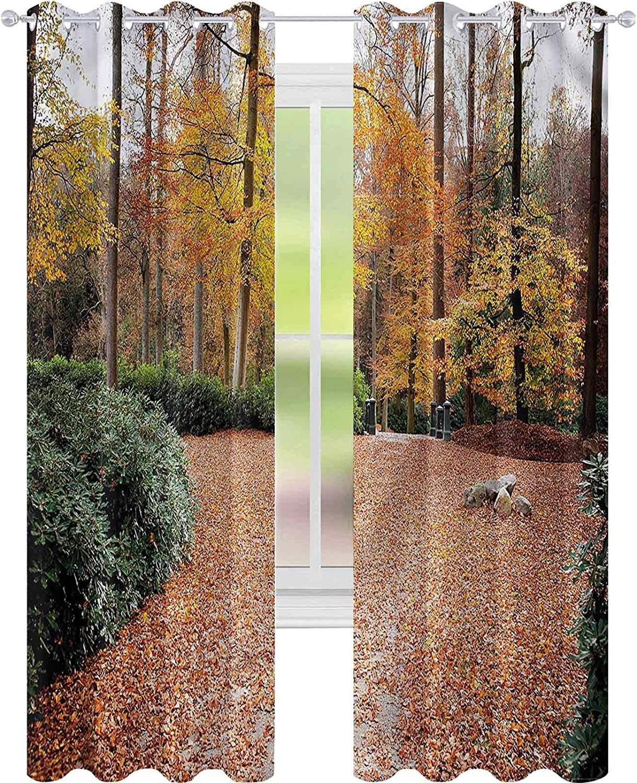 Window New York Mall Curtain Drape Nature Autumn Forest x B Max 64% OFF Trees L84 Fall W52