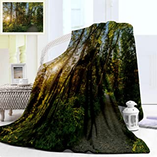 "Fluffy Blanket for Baby Girl or Boy, Landscape National Wonderful Park in Cape Luxury Breton Highlands Canada Forest Flannel Blanket Soft Cozy for Baby or Infant, Baby Blanket 40"" x 30"""