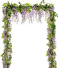 Best wisteria vine pics Reviews