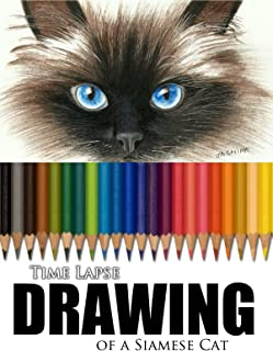 Clip: Time Lapse Drawing of a Siamese Cat