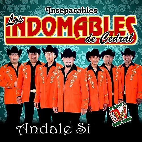 ae56a82afe La de la Falda Cortita by Los Indomables de Cedral Inseparables on Amazon  Music - Amazon.com