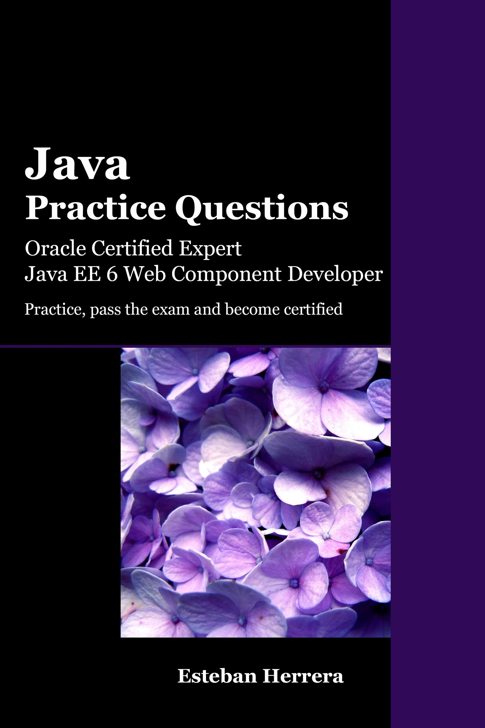 Image OfJava Practice Questions: Oracle Certified Expert, Java EE 6 Web Component Developer (OCEJWCD) (English Edition)