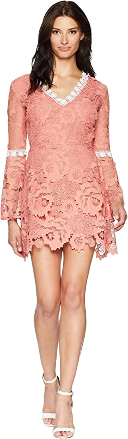 Fit & Flare Contrast Lace Dress